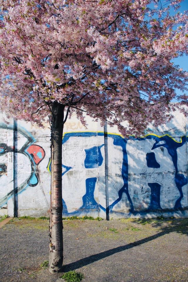Street of 9th November 1989 in Berlin
