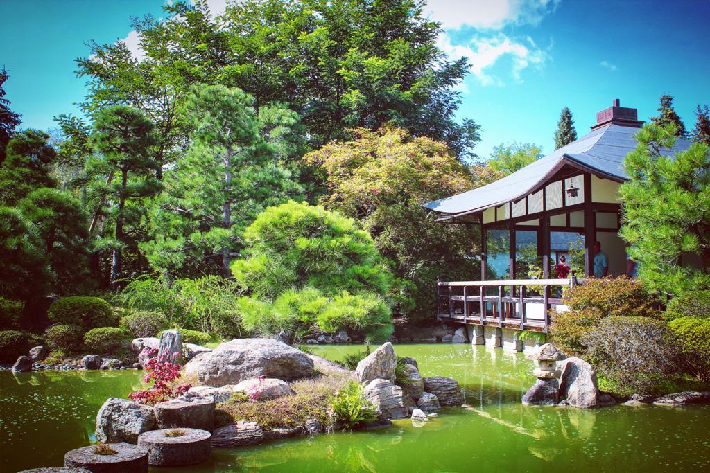 Japanese Bonsaigarden in Ferch